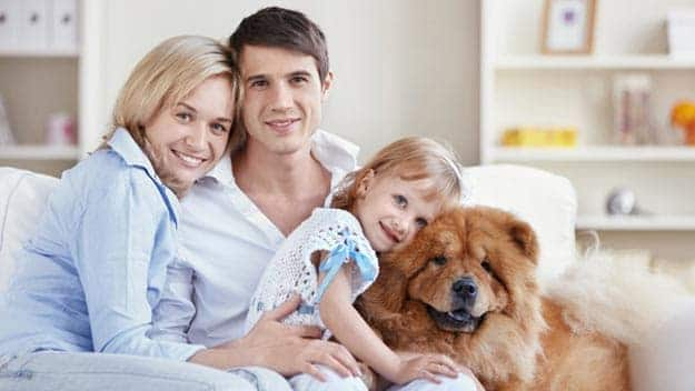 Wills & Trusts dog-young-family Direct Wills Manchester
